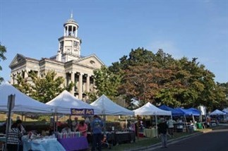 Vicksburg Old court house flea market